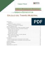 12m) tamanoMuestral08