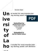 BioPhysics Review Paper