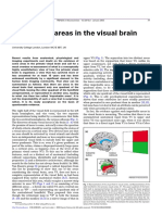 Improbable Areas in the Visual Brain