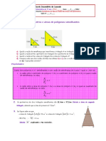 ft36-razc3a3o-das-c3a1reas-e-dos-perc3admetros.pdf