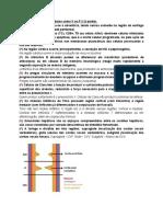 Prova 13.1 - Digitada com Gabarito.docx