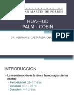 Hua Hud Palm Coein Usmp