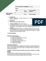 proyecto educativo ambiental I.E..docx
