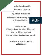 Tipos de Microorganismos APMI