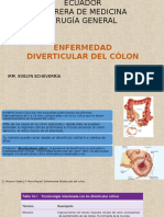 Enf Diverticular Del Colon