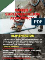 Tmp_26309-Alimentacion Ovinos y Caprinos2101833586