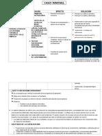 232597974-caso-innoval-docx.docx