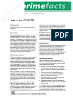 Vibriosis of Cattle