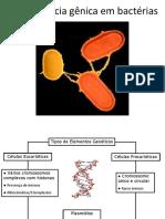 09. Transferência Gênica Entre Bactérias