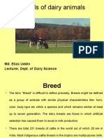 Breeds of Dairy Animals