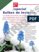 Bulbos_de_invierno.pdf
