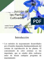 Reproducción de Las Plantas Cultivadas