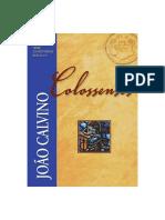 João Calvino - Colossenses.pdf