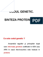 Codul genetic , sinteza proteinelor.ppt