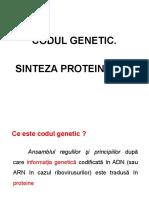 Codul genetic , sinteza proteinelor.ppt