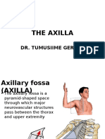 The Axilla