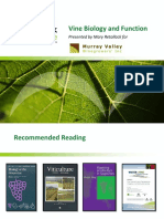MVWI Vine Biology Presentation 101009
