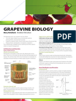 MVWGG Fact Sheet - Grapevine Biology