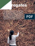 AD - Aggregates.pdf