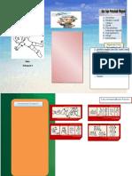 Leaflet Pingsan