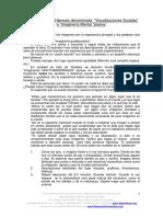 Documentacion Adicional - Visualizaciones Guiadas