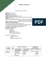 1_0proiectdidactic2.doc