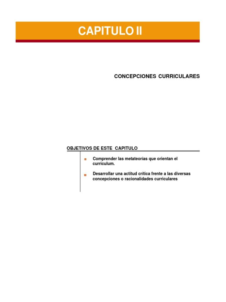 CONCEPCIONES CURRICULARES.pdf
