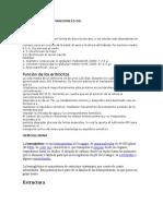 Caracteristicas Principales de Eritrocitos