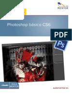 Manual CS6