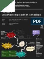 Principales Esquemas de Explicacion en la Psicologia