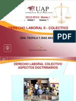 DERECHO Colectivo (1)
