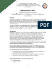 Informe laboratorio metalurgia extractiva