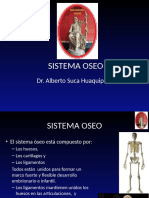 2 Sistema Oseo 1
