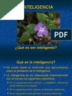 inteligencia (7)