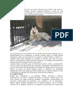 articulos de divulgacion .doc