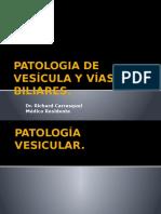 Patologia de Vesícula y Vías Biliares