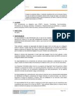 PRO-048-VEHÍCULOS-LIVIANOS-ESPAÑOL.pdf