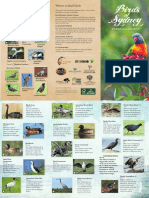 Birding-NSW-Birds-of-Sydney.pdf