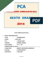 PCA Sexto 2014