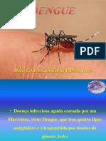 Aula Dengue 19Ago2015
