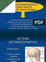 sistemaestomatognatico-100724095216-phpapp02