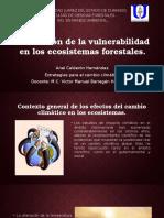 Evaluación de La Vulnerabilidad en Los Ecosistemas Forestales