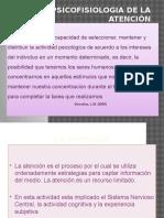 Presentacic3b3n Atencion