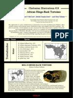 HingebackTortoise.pdf