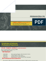 Primavera Modul-1.pdf