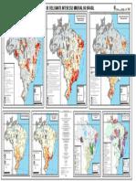 ARIM Brasil Mapa