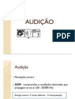 Aula Sist Auditivo