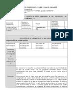 FORMATO PARA PROYECTO.docx