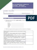 evaluacion de las competencias.pdf