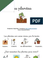 Unidad Didactica Las Plantas